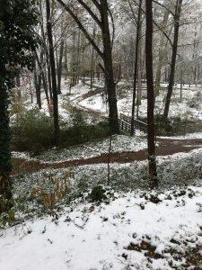 Dearborn Park Deerwood Trail Decatur Midway Woods
