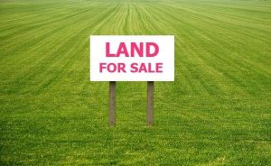 We Buy Land Decatur HausZwei Homes
