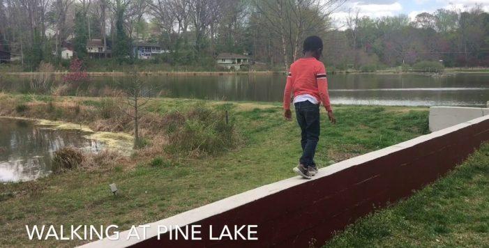 Pine Lake Ga Real Estate Kevin Polite Solid Source Realty